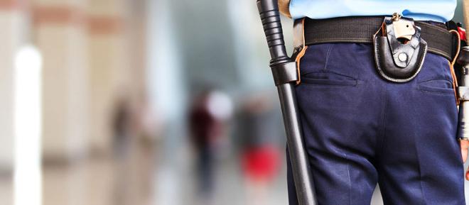 Vigilant de Seguretat + Especialització