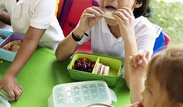 Monitor de Comedores y Actividades Escolares