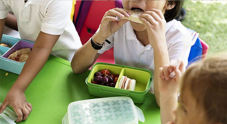 Monitor de Comedores y Actividades Escolares | Aulacat | Cursos ...